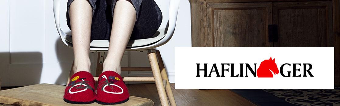 92321-haflinger-banner